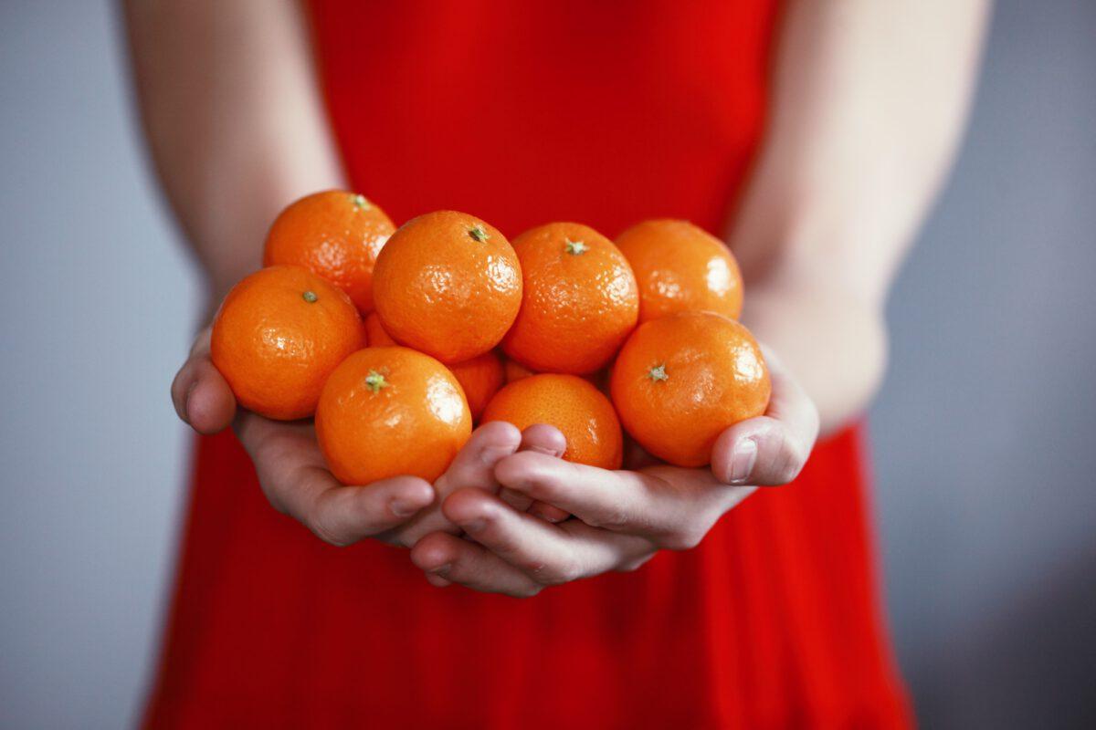 vrouw in jurk houd mandarijnen vast